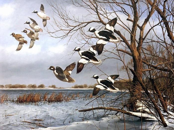 絵画き飛ぶ鳥
